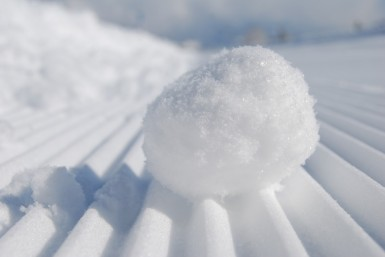snowball-957759_960_720